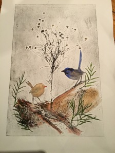 Blue Wrens with Wiry Buttons