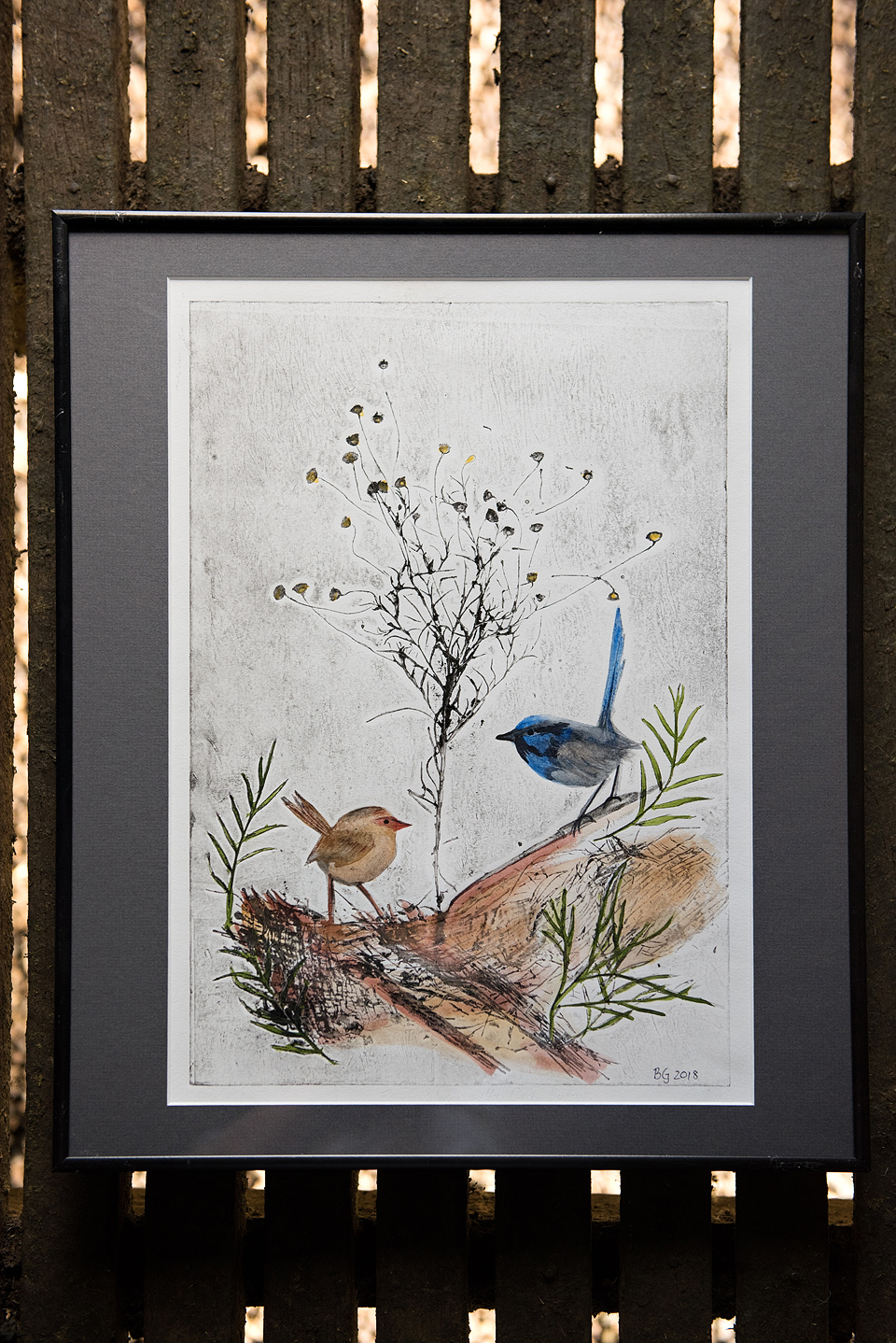 Blue Wrens and Wiry Buttons
