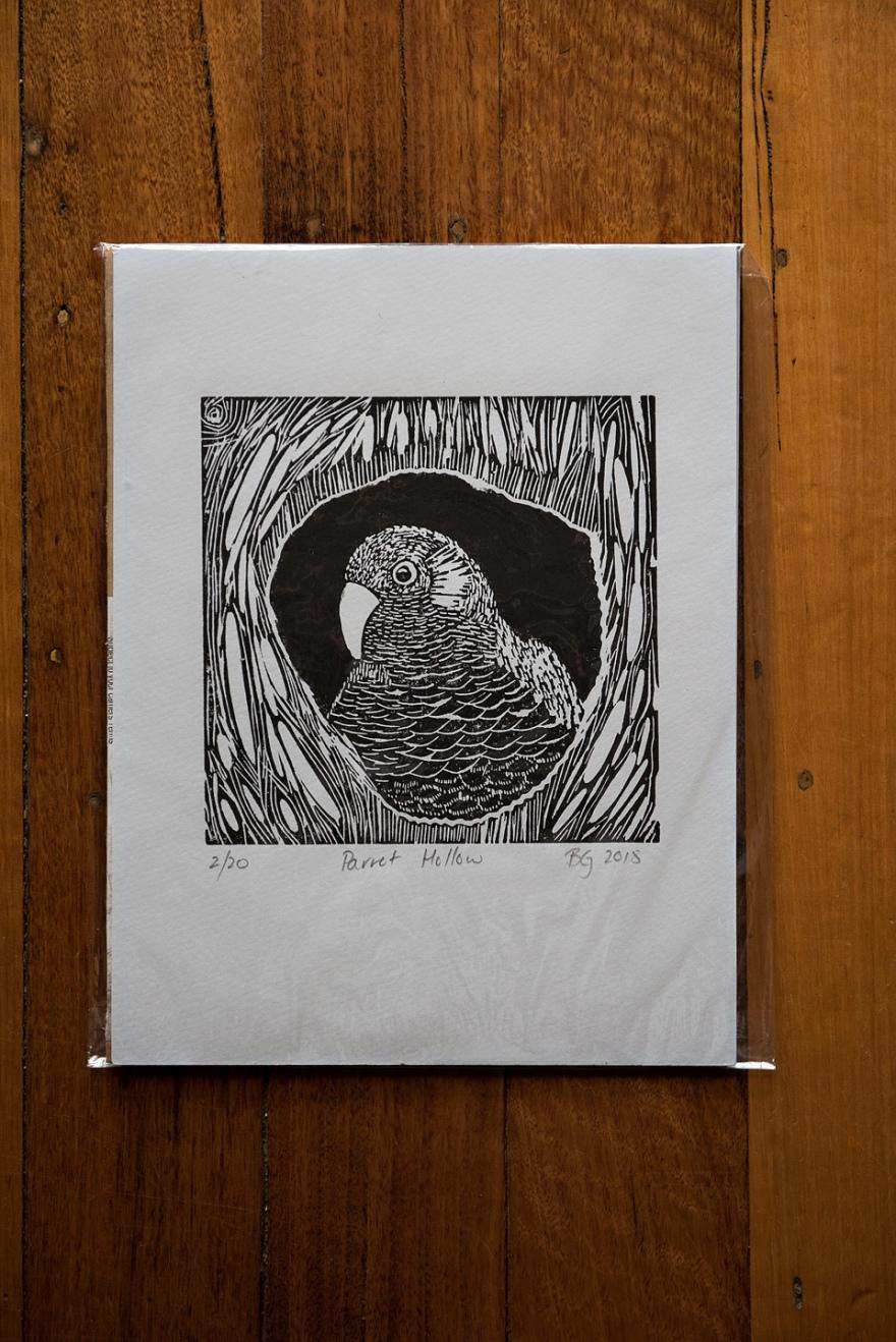 Parrot Hollow